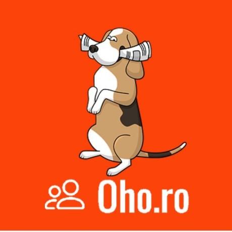 Anunțuri Oho.ro