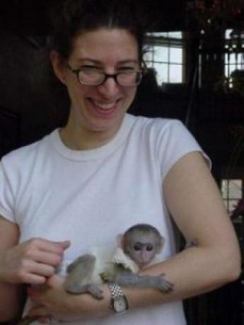 calitate-maimute-cu-capucini-pentru-adoptie-big-0