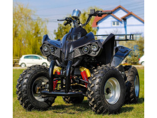 Atv 250Cc Akp Warrior Deluxe Manual/Roti De 10