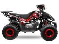 atv-125cc-rizzors-deluxe-automat-roti-de-7-small-2