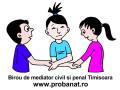 mediator-in-civil-si-penal-small-0
