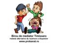 mediator-in-civil-si-penal-small-1