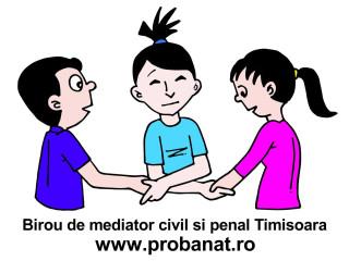 Mediator in civil si penal