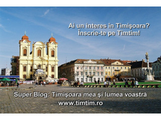 Super blog din Timisoara cu director gratuit de promovare