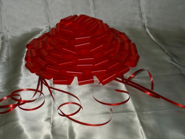 ornamente-masini-nunta-big-1