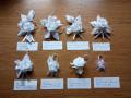 flori-piept-cocarde-nunta-small-3